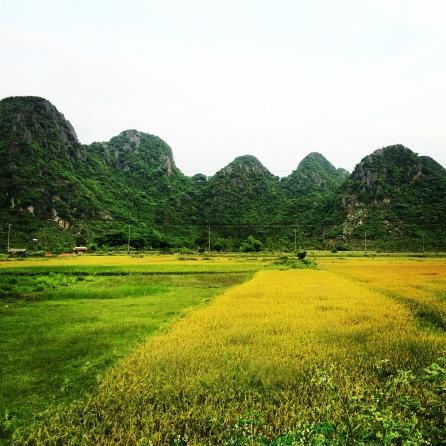 Phong Nha-Ke Bang